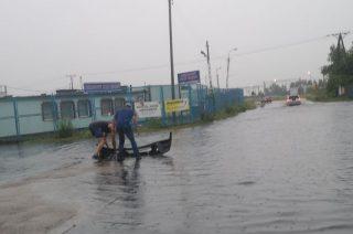 Znów zalane ulice, posesje i auta. Tak będzie po każdej ulewie [ foto i video]