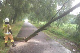 Przeszła burza. Druhowie z OSP Szreńsk w akcji