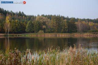 Dzień Dzikiej Flory, Fauny i Naturalnych Siedlisk. Ich ochrona to obowiązek nas wszystkich