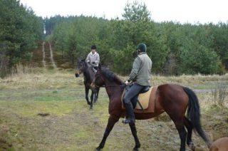 To coś dla amatorów konnych przejażdżek i leśnego powietrza