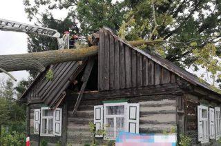 Drzewo przewróciło się na dom. Interweniowali strażacy