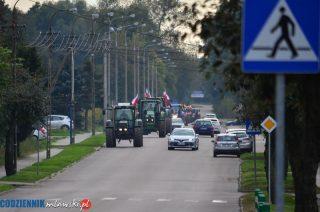 Rolnicy z gminy Strzegowo też protestowali w Mławie [zobacz film]