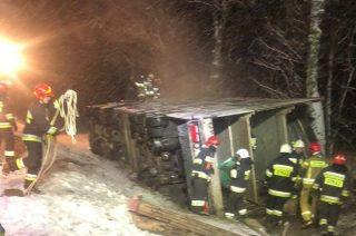 Wywrócona ciężarówka. 35 świń martwych