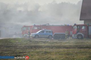 Pożar kurnika w Kosinach Starych. Udusiło się ponad 60 tys. kurczaków [FILM i FOTO]