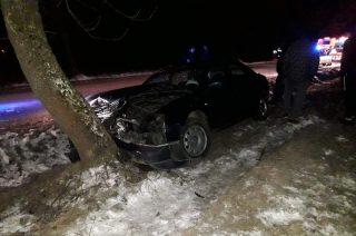 Audi zatrzymało się na drzewie [FOTO]