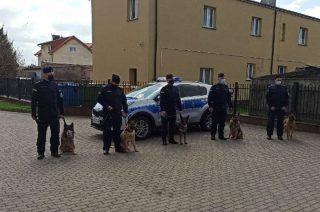 Pies Ivo z płońskiej policji odszedł na emeryturę