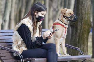 Nowe, wysokie mandaty za brak właściwego nadzoru nad psem