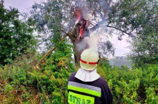 Piorun uderzył w drzewo. Połamane konary na drodze i nad strażnicą