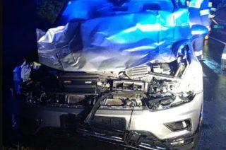 Uderzyli autem w krowę na drodze, wylądowali w szpitalu