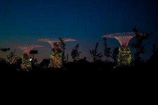 U sąsiadów. Podświetlane konstrukcje, ławko-huśtawka i figury aniołków w parku