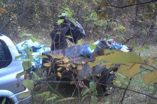 Wywiózł śmieci do lasu. Strażnicy z Dwukół ustalili sprawcę dzięki fotopułapce