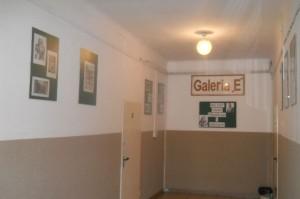 Wystawy luty 008