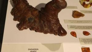 Wystawa w Muzeum Ziemi Zawkrzeńskiej - 12