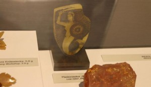 Wystawa w Muzeum Ziemi Zawkrzeńskiej - 18